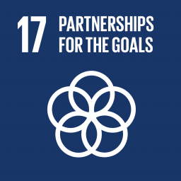 17. Partnership for the goals