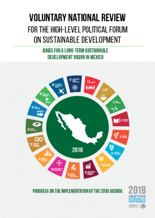 Voluntary National Review for the High-Level Political Forum on Sustainable Development, basis for a long-term Sustainable Development vision in Mexico