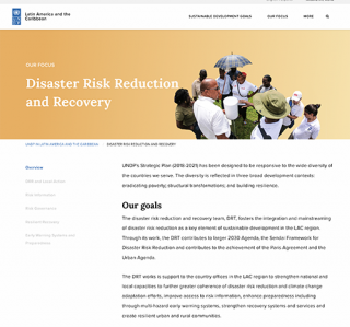 Screenshot Disaster Risk Reduction and Recovery