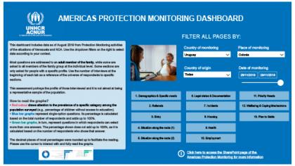 Protection monitoring, Uruguay dashboard november