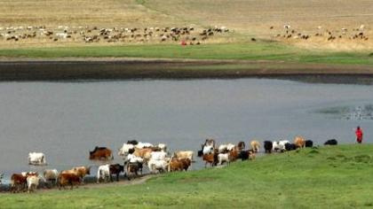 GLEAM-Global Livestock Environmental Assessment Model
