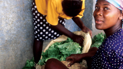 Haiti's community gardeners enthusiastic about nutrition